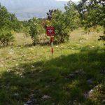 Deminerski timovi Federalne uprave civilne zaštite očistili lokaciju Gornja Duboka koja se nalazi pored puta Stolac-Duboka